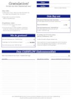Cashflow 101 & 202 Einkommensübersicht & Bilanzblatt, Finanzblatt (back) blaurot noLogo