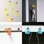 Whiteboard und Flipchart Magnete